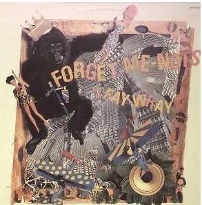 Forget Me Nots - 2 Fay Wray E.P.