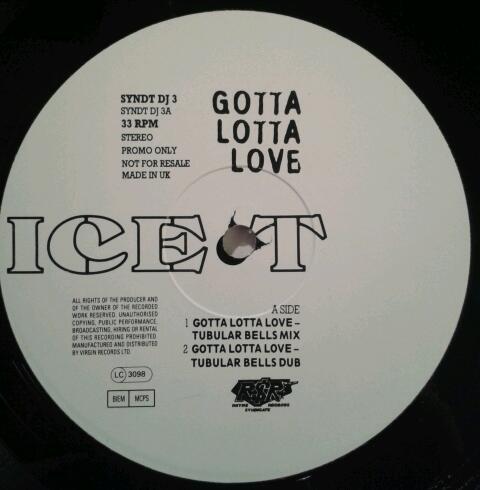 ICE T - GOTTA LOTTA LOVE