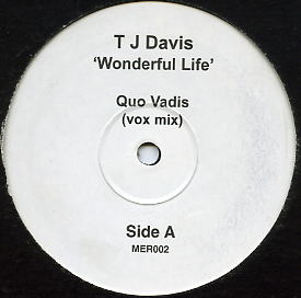 TJ Davis - Wonderful Life