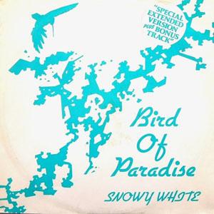 Snowy White - Bird Of Paradise
