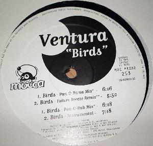 Ventura - Birds