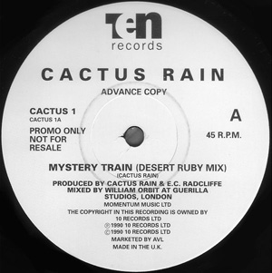 Cactus Rain - Mystery Train
