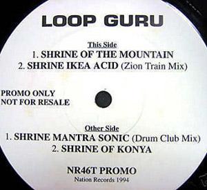 Loop Guru - Shrinic Visions
