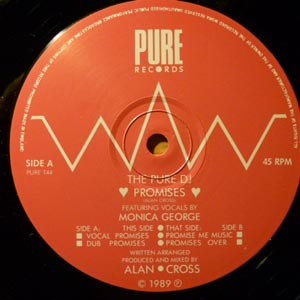 Pure DJ, The Featuring Vocals By Monica George - Promises