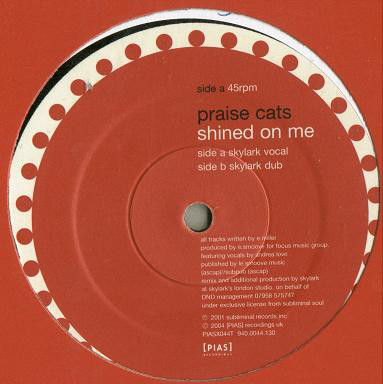 Praise Cats - Shined On Me (Skylark Remixes)