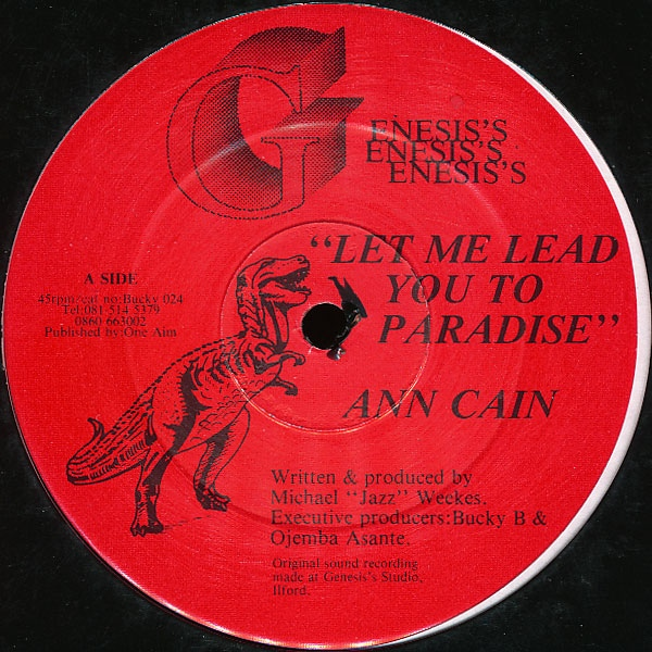 Ann Cain - Let Me Lead You To Paradise