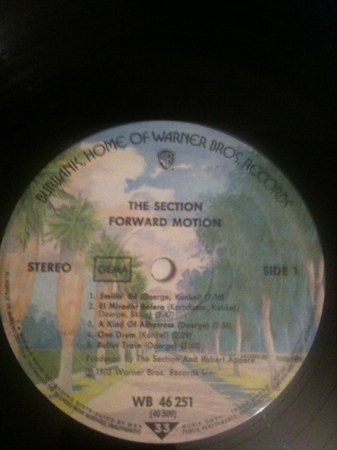 Section, The - Forward Motion