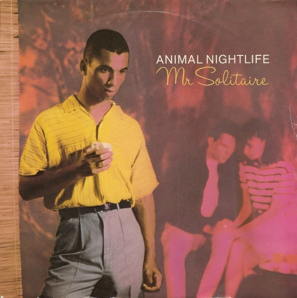 Animal Nightlife - Mr Solitaire