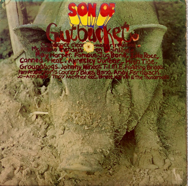 Various - Son Of Gutbucket