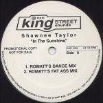 Shawnee Taylor - In The Sunshine
