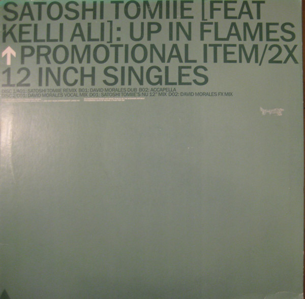 Satoshi Tomiie Feat Kelli Ali - Up In Flames