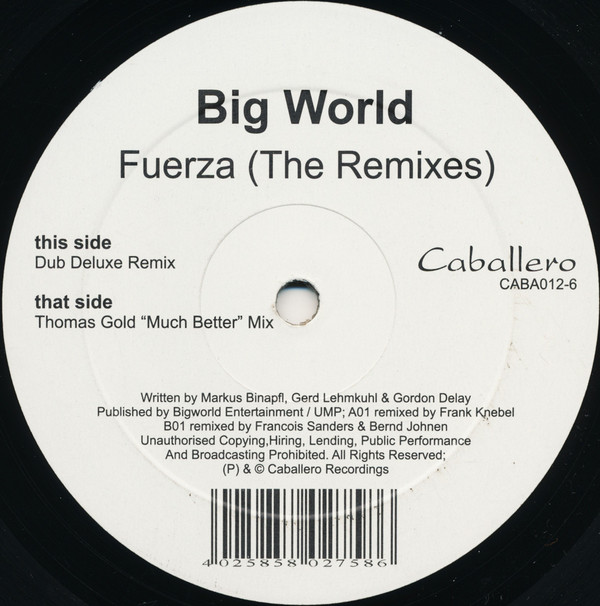 Big World - Fuerza (The Remixes)