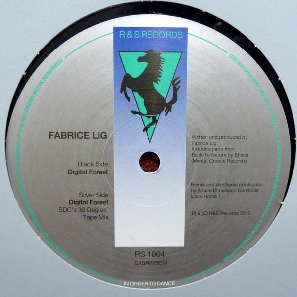Fabrice Lig - Digital Forest