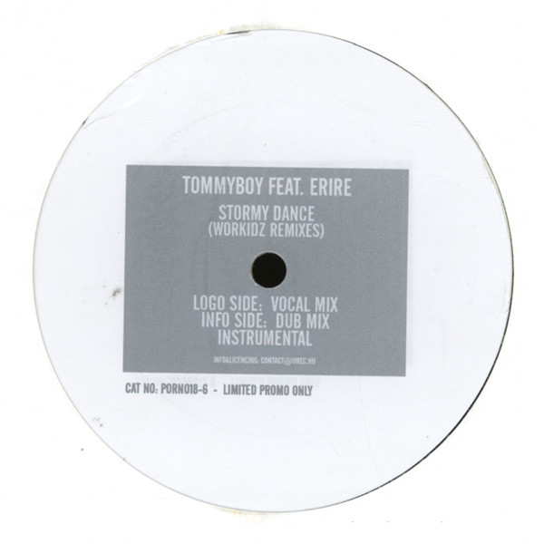 Tommyboy & Sultan Feat. Zara - Stormy Dance (Workidz Remixes)
