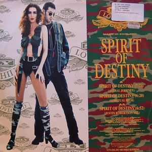 SLY & LOVECHILD - Spirit Of Destiny Record