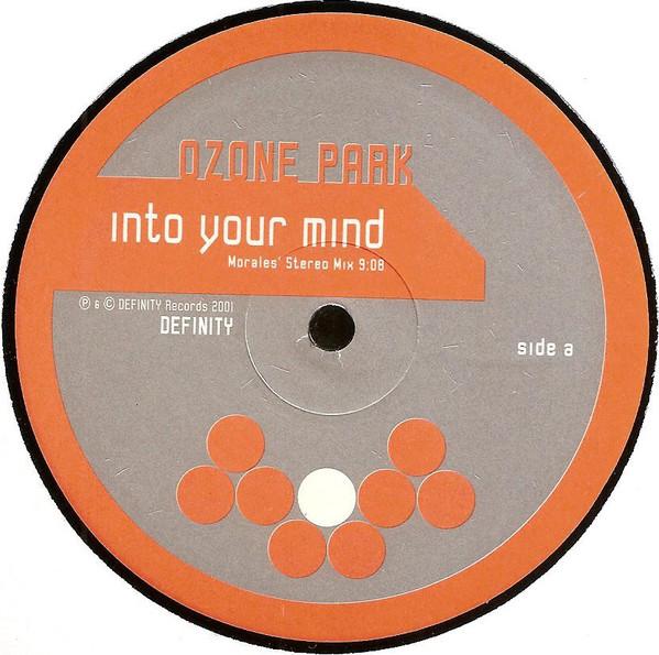 Ozone Park - Into Your Mind / D Journey