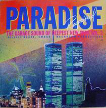 Various - Paradise Regained: Garage Sound Of NY Vol. 2