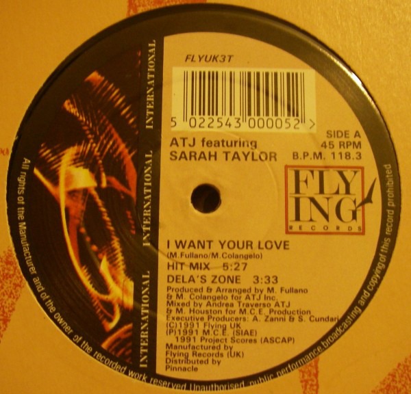 ATJ Featuring Sarah Taylor - I Want Your Love
