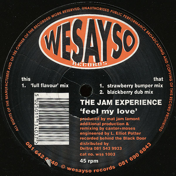 The Jam Experience - Feel My Love