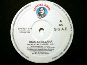 Raul Orellana - The Real Wild House - The Remixes